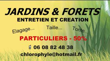 jardinier-elagueur-toulouse-31-