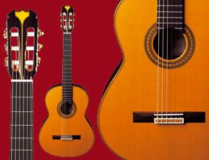cours-de-guitare-a-domicile-sur-toulouse