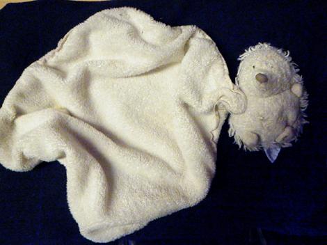 trouve-doudou-plat-herisson-blanc-toulouse-place-des-carmes