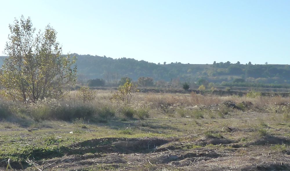 terrain-3-ha-en-za-proche-clermont-l-herault-35mn-montpellier