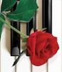 piano-numa-copy-rique-le-p45-de-yamaha-neuf-