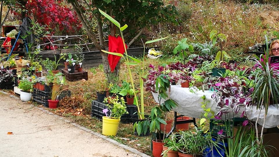 vide-jardin