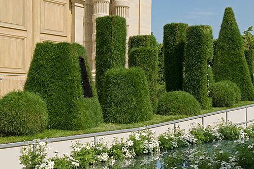 Cesu jardinage et entretien jardin toulouse 31 for Entretien jardin particulier