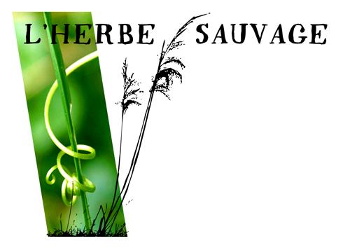 Montlaur 31450 petites annonces gratuites annonces for Annonce entretien jardin