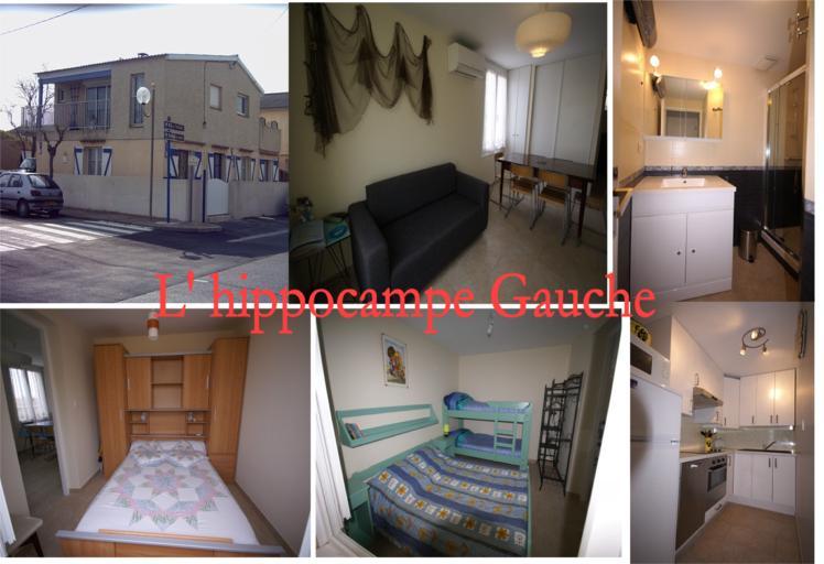 loue 3 appartements wi fi climatis s gruissan plage 2 6 pers 11430 annonces toulouse. Black Bedroom Furniture Sets. Home Design Ideas