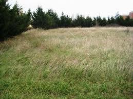 Terrain constructible à vendre Lagardelle-sur-Lèze 31870