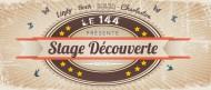annonces.Toulouse-annuaire - Stage De Découverte : Lindy Hop, Rock'n Roll, Salsa, Charleston