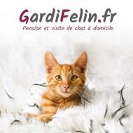 annonces.Toulouse-annuaire - Visites à Domicile Et Pension Féline