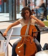annonces.Toulouse-annuaire - Cours De Violoncelle à Colomiers