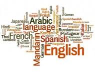 annonces.Toulouse-annuaire - Cours De Langue Arabe Littéraire Et Dialectale