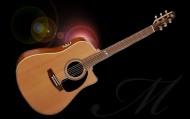 annonces.Toulouse-annuaire - Cours De Guitare Tous Styles à Grenade Sur Garonne