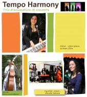 annonces.Toulouse-annuaire - Tempo Harmony Trio Variété Internationale
