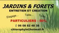 annonces.Toulouse-annuaire - Jardinier, Elagueur, Toulouse 31