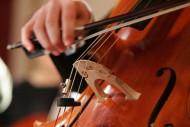 annonces.Toulouse-annuaire - Cours De Violoncelle à Domicile Toulouse Et Environs