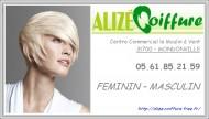 annonces.Toulouse-annuaire - Alizé Coiffure - Coiffure Mixte à Mondonville