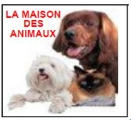 annonces.Toulouse-annuaire - L'été à La Maison Des Animaux