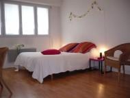 annonces.Toulouse-annuaire - Toulouse Centre Place Dupuy Studio Meublé